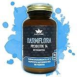 Probiotika Pulver mit 14 Bakterienstämmen im GLAS ohne BPA + Präbiotika Inulin - laborgeprüfte Markenqualität - Probiotikum für die Darmflora oder eine Darmsanierung - ohne Zusatzstoffe, hochdosiert
