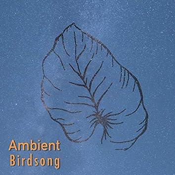 Ambient Birdsong, Vol. 2