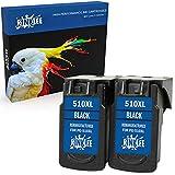 RINKLEE Remanufacturado para Canon PG-510XL Cartucho de Tinta Compatible con Canon Pixma iP2700 iP2702 MP230 MP240 MP250 MP260 MP270 MP280 MP480 MP490 MP495 MP499 MX320 MX350   Negro, 2-Pack