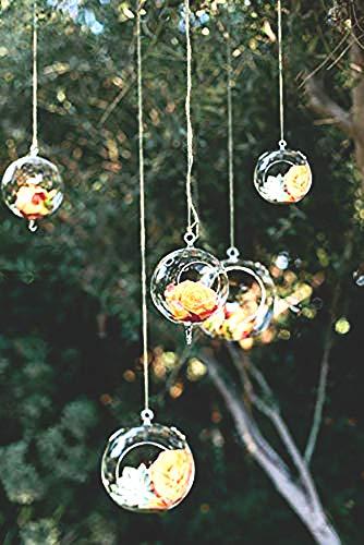 Ecosides 8cm 12 Hängenden Glaskugeln mit Loch,Hängend Teelichthalter aus Glas Kerzenhalter Windlichter Kristalle Terrarium Vase Sukkulenten Luftpflanzen Halter Hänge Deko für Hochzeit Garten
