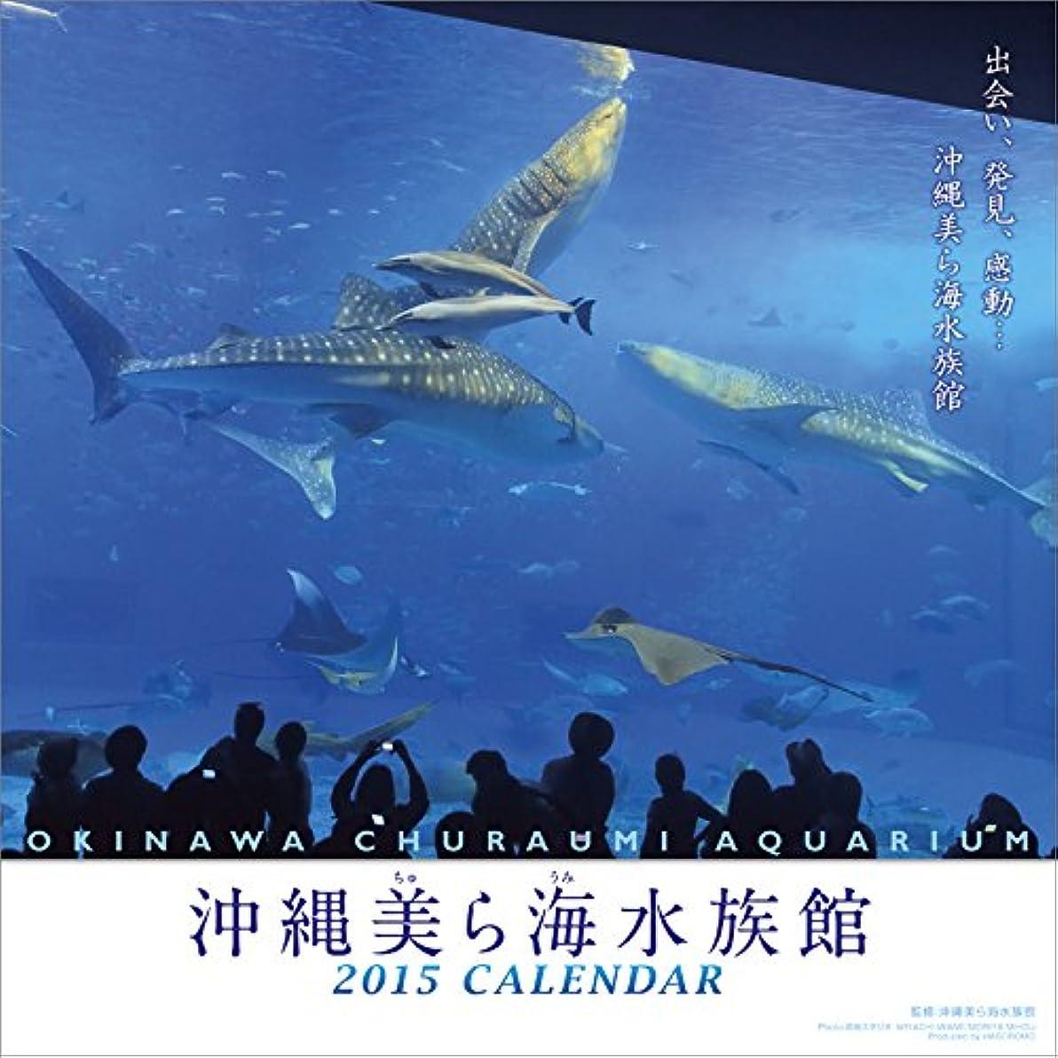 パッケージ最も早い流用する沖縄美ら海水族館 カレンダー 2015年