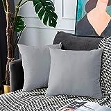 UPOPO Juego de 2 fundas de cojín de terciopelo, decorativas de un solo color, para sofá, dormitorio, salón, con cremallera, 60 x 60 cm, color gris claro