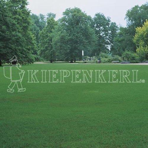 Kiepenkerl 4000159801066 RSM 2.2.2 Gazon à semer pour Terres sèches 10 kg