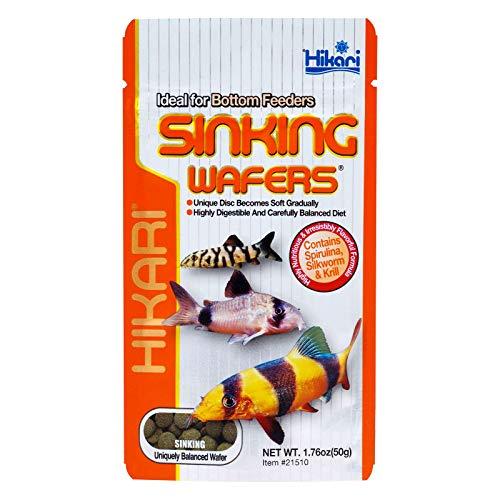 Sinking Wafers Tropische Fischfutter, 50 g