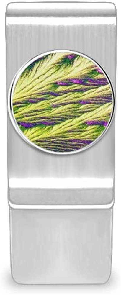 Reeds Cluster low-pricing Feather Colour Dedication Wallpaper Cash Ca Money Wallet Clip