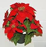 P.Shop Christstern Weihnachtsstern künstlich Dekopflanze rot H: 34 cm
