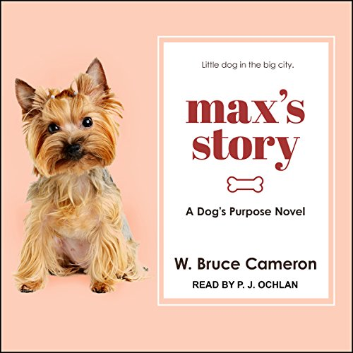 Max's Story audiobook cover art