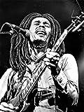 Credence Collections Bob Marley Populärer Sänger HD