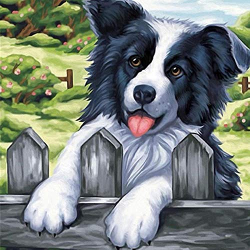5D Diamond olieverfschilderij door digitale verfkit volledige diamant DIY kunst ambachten geschikt voor thuis muurdecoratie hek hond 45x45cm