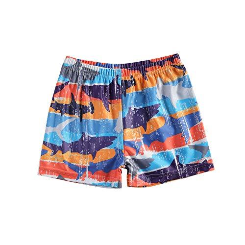 Komoo Toddler Baby Boys Swim Trunks Quick Dry Fruit Cartoon Printed Beachwear Elastic Waist Summer Swimsuit (Style-4, 2-3T)