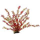 perfk Plantas Acuáticas Subacuáticas Agua Weed Paisaje Decoración Peces Acuarios Decoraciones - Tipo 1, Individual