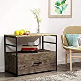 GREATMEET Wood Lateral File Cabinet with Drawer for Letter,Legal, A4 Size, Printer Stand Storage Cabinet for Home Office Brown 30.3' L x 18.5' W x 25' H