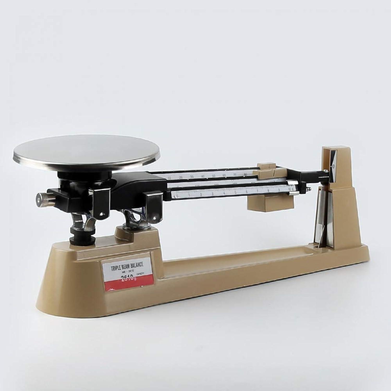 LETAMG Drug Balance Scale Laboratory Balance 2610 0.1G Three Ruler Balance Unequal Arm Type Single Disc Balance With 3 Beams