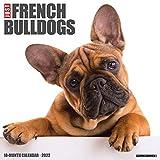 Just French Bulldogs 2022 Wall Calendar