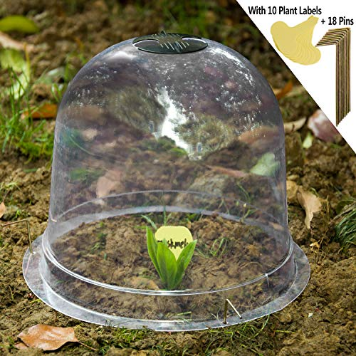 TINGYUAN Garden Cloche Plant Bell Cover 6 Pack Plant Covers Freeze Protection Ground Securing Pegs (10