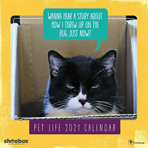 """TF PUBLISHING 2021 Pet Life Monthly Wall Calendar - Appointment Tracker - Contacts and Notes - Home or Office Planning - Gloss 12""""x12"""""""