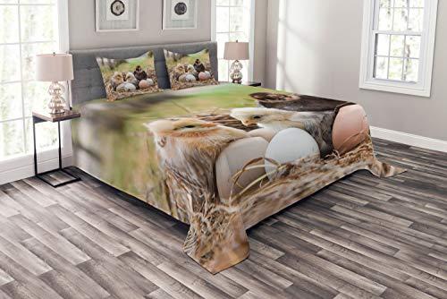 ABAKUHAUS Chicks Tagesdecke Set, Kleine Hühner in Hay Eier, Set mit Kissenbezügen luftdurchlässig, für Doppelbetten 220 x 220 cm, Mehrfarbig