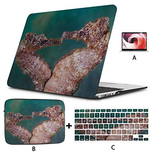 Mac Book Pro Case Secret Seahorse Underwater Computer Cover Hard Shell Mac Air 11'/13' Pro 13'/15'/16' with Notebook Sleeve Bag for MacBook 2008-2020 Version