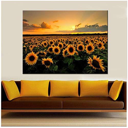 zhaoyangeng canvasafbeeldingen Hd gedrukte afbeeldingen 1 stuk mooie zonnebloemen in een veld poster wooncultuur woonkamer muurkunst - 40X60cm / niet ingelijst