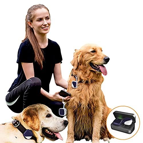 Rastreador GPS para mascotas de 1 a 3 perros, sin tarifa mensual,...