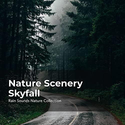 ASMR Rain Sounds, Sleepy Rain & Rain Sounds Nature Collection
