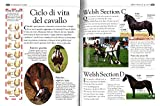 Zoom IMG-2 enciclopedia del cavallo ediz illustrata
