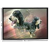 Pets-easy Basset de Gascogne sobre felpudo de perro de caza