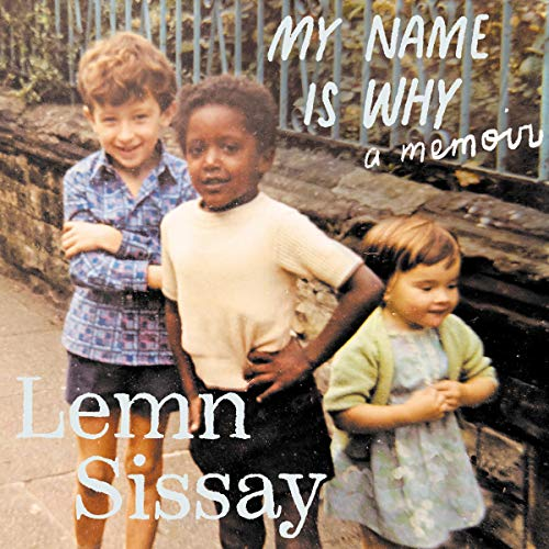 My Name Is Why audiobook cover art
