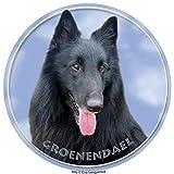 Lukka Groendael – Perro de pastor Belga autoadhesivo 15 cm