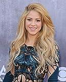 B-HOA1B2 Shakira 35cm x 43cm,14inch x 17inch Silk Print