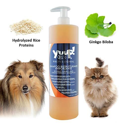 Yuup!® Professionelles restrukturierendes Aufbau-Shampoo Variante (Volumen) 1 Liter Flasche