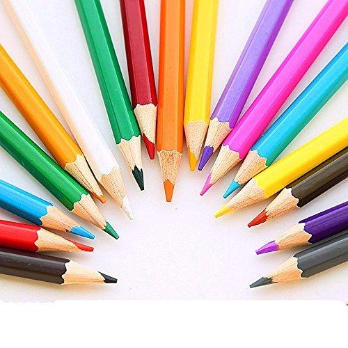 12-color Art Colored Drawing Pencils for Kids Drawing/ Artist Sketch/ Adult Secret Garden Coloring Book/ Manga Artwork (12-color)
