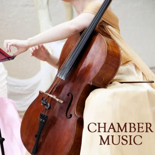 Venice Chamber Music Specialists