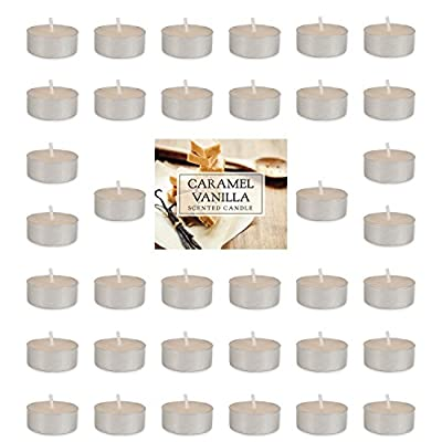 Home Traditions Highly Scented Tealight Candle (Pack of 36) for Home Décor, Wedding, Party, Holiday, Spa & Aromatherapy - Evergreen