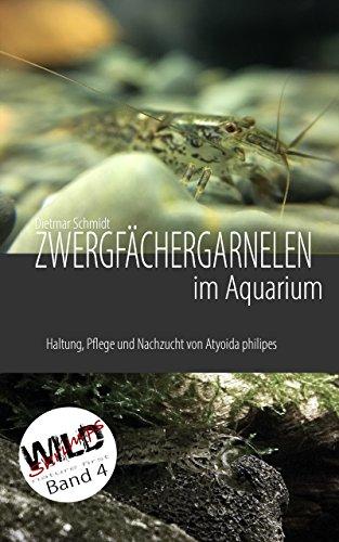 Zwergfächergarnelen im Aquarium: Haltung, Pflege und Nachzucht von Atyoida philipes (WILD SHRIMPS Fächergarnelen 4)