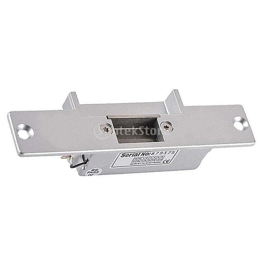 高揚したポンド昆虫電気ストライク 安全 電気ストライク ドアロック アクセス 制御システム 効果的 防止