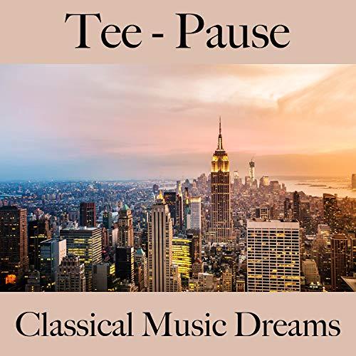 The Four Seasons, Violin Concerto No. 1 in E Major, RV 269 'La primavera': II. Largo