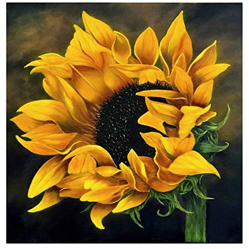 Eiflow Sunflower Diamond Painting Art Kits for Adults - 5D Paint by Diamond Kit Round Embroidery Kits Full Drill Gems,Great Gift for Family or Friends(12x12in)