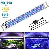 BELLALICHT Éclairage LED pour Aquarium Lampe...