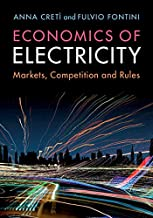 Economics of Electricity: Markets, Competition and Rules (English Edition)