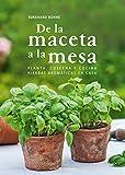 De La Maceta A La Mesa: Planta, cosecha y cocina hierbas aromáticas en casa (Otros Naturaleza)