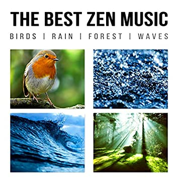 The Best Zen Music: Birds, Rain, Forest, Waves - Music to Help You Relax & Meditate, Sounds of Nature for Yoga, Sleep, Your Mind and Your Soul