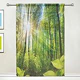 BIGJOKE Fenstervorhang, Baum, Blätter, Gardinen, Küche, Wohnzimmer, Dekoration, Schlafzimmer, Büro, Voile, 1 Stück