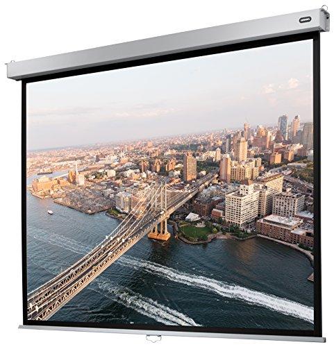 celexon manualmente Extensible Pantalla para Cine en casa y Negocios 4K y Full-HD Enrollable -Pantalla Professional Plus- 160 x 120 cm - 4:3
