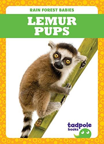 Lemur Pups (Rain Forest Babies)