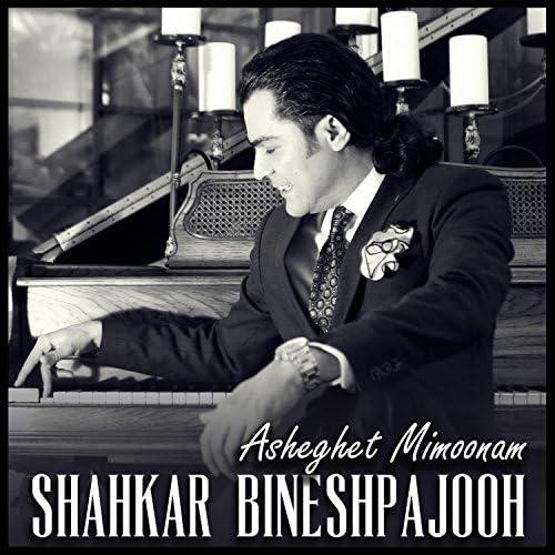 Shahkar Bineshpajooh
