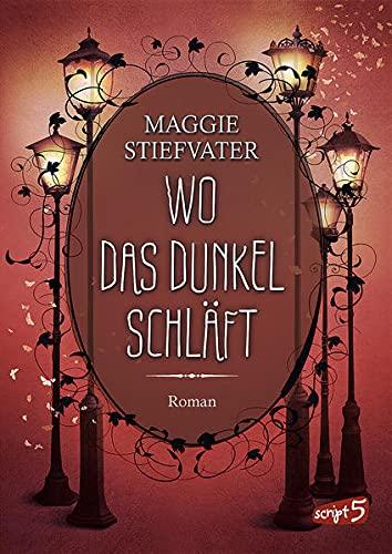 Wo das Dunkel schläft (Band 4): Entdecke die spannende Mischung aus Fantasy, Romantik und Spannung - Fantasyroman ab 14 Jahren
