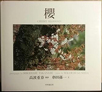 桜―CHERRY BLOSSOMS