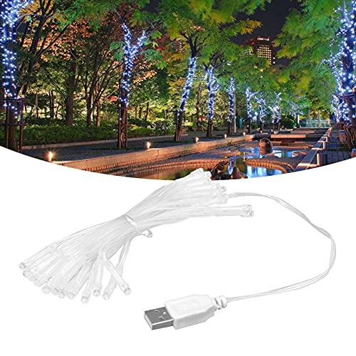01 Cadena de Luces LED, Hada USB de luz Azul Decorativa para Decoraciones de Pared Interiores al Aire Libre para Bodas, Fiestas, Jardines en casa