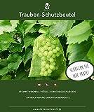 90 bolsas protectoras para las uvas, tamaño 23x15 cm, color: verde, para la protección contra las avispas, pájaros, moscas de la cereza e insectos. Bolsas protectoras para frutas, organza